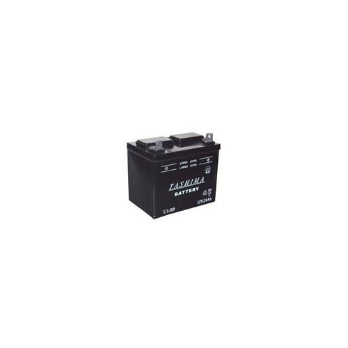 Lawnmower battery / microtractor 12V 24Ah