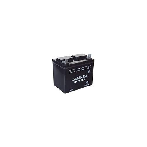 Batterie Micro Tracteur / Tondeuse U1-L7 / 12V 18Ah