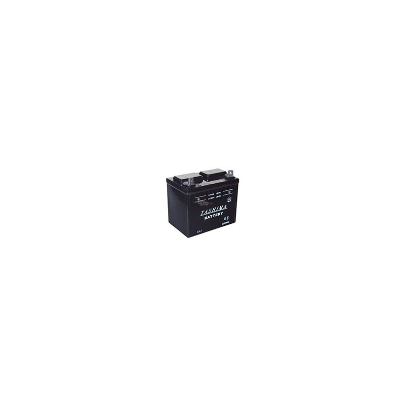 Lawnmower battery / micro tractor U1-L7 / 12V 18Ah