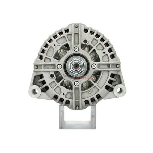 Alternator replacing ISKRA 11203389 / 11204187/ AAN5346 / AAN5511