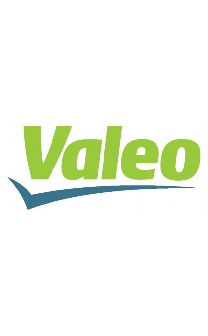 Alternator replacing VALEO
