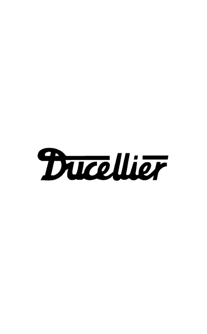 Set of brushes for DUCELLIER