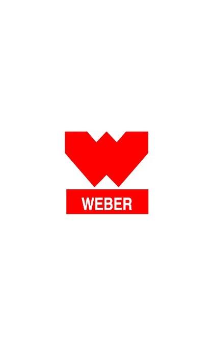 WEBER Dichtungssatz und Teile