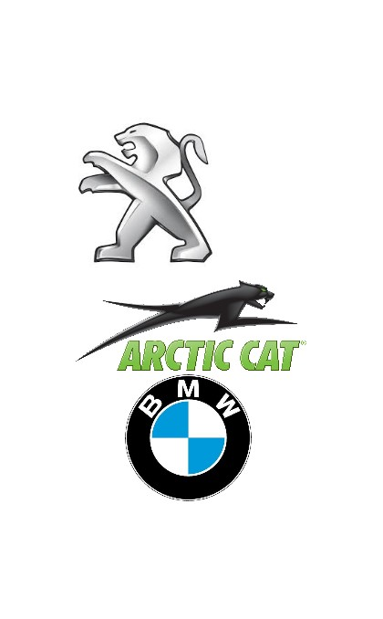 Starter for Artic cat / BMW / BMS motorsport / PEUGEOT